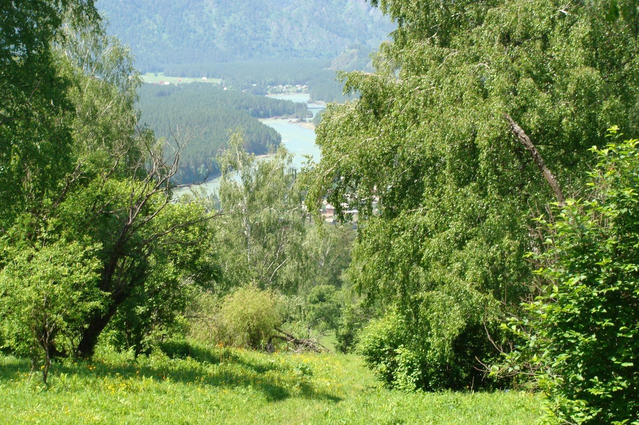 Участок с панорамным видом на Катунь
