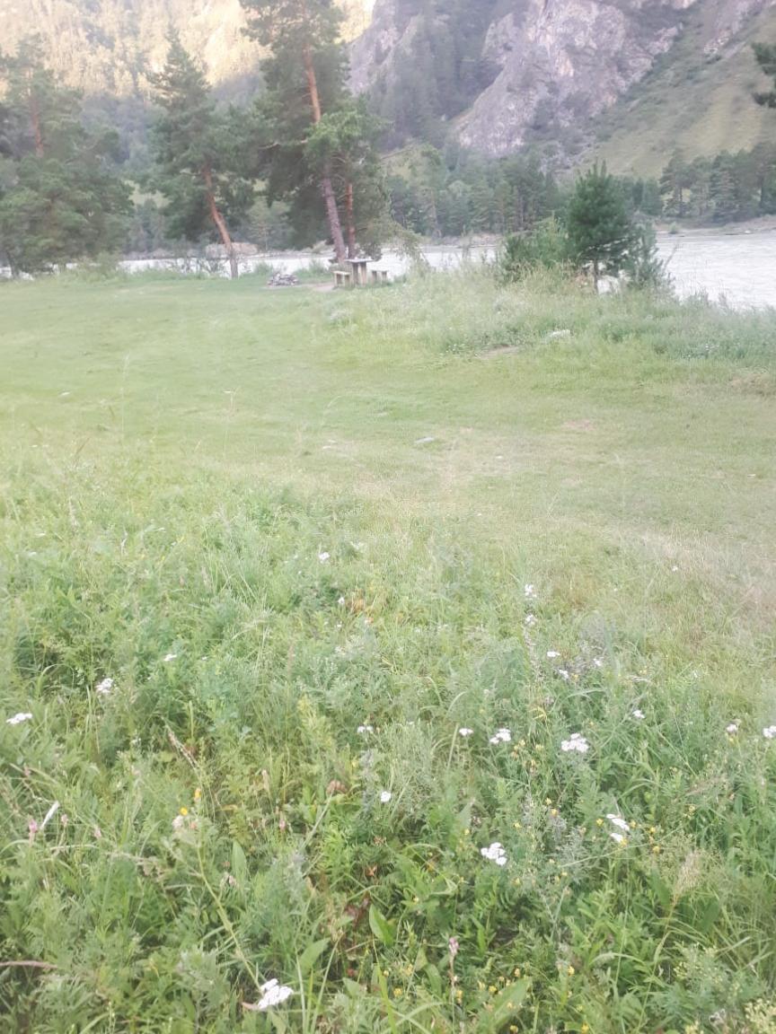 Земельный участок 10 км от Чемала